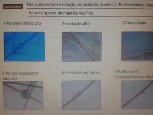 analise capilar