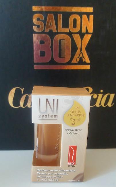 Salon Box -óleo.jpg