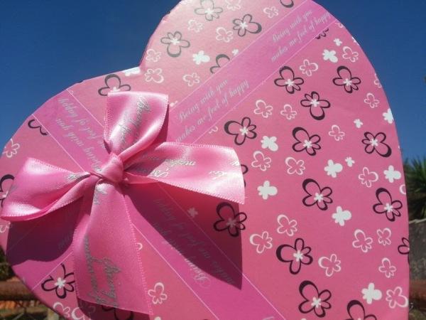 viva pink - edição 1 - caixinha.jpg